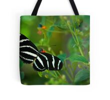 A Zebra Longwing Butterfly  Tote Bag
