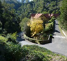 The Caves House at Jenolan by PhotosByG