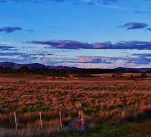 Old bridge and Mt William Panoramic  by Kylie Mckay