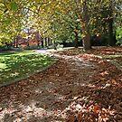 "Gardens of ""Bebeah"" 1 by Geoff Smith"
