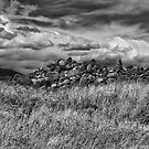 stones in a field with dramatic sky by PhotoStock-Isra