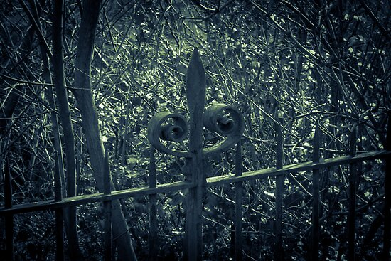 The Mighty Fence by Errne