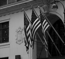 Patriotic New York City  (B&W) by jeffreynelsd
