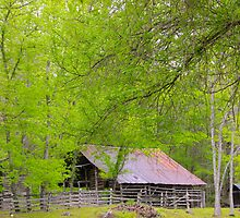 Ozark Living,  Historic Jim Villines boyhood home, by NatureGreeting Cards ©ccwri