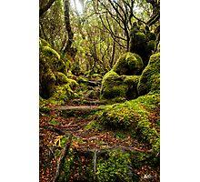 A Treacherous Path Photographic Print