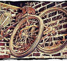 """""""Elvis Presley's Bicycles"""" by Gail Jones"""