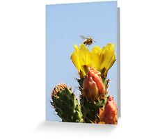 Buzzing In For A Landing! Greeting Card
