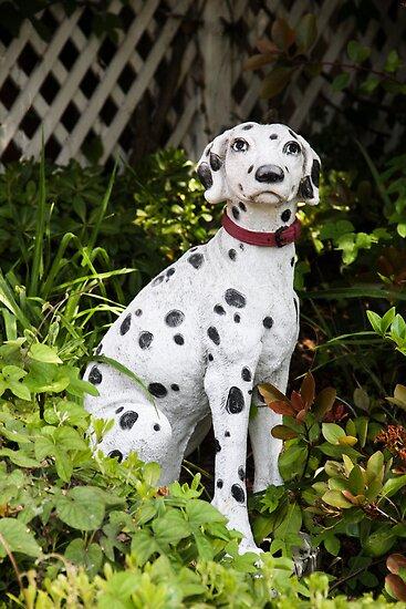 Garden Dalmatian by heatherfriedman