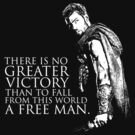 Spartacus - Victory by Madex