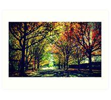 Autumn In Canberra Art Print