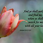 Jeremiah 29 13 by Deborah McLain