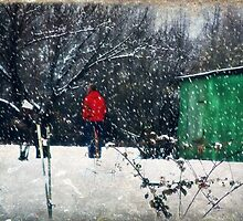 Green Shed by Ginger  Barritt
