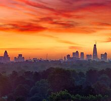 Hyde Park - Panoramic by redtree
