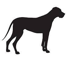 Great Dane Silhouette by Maria Bell