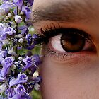 Lavender Flower Eye Candy by Jessica Shields