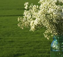 Baby's Breath in a Jar by reindeer