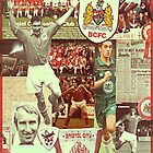 Bristol City Robins Collage by Michael Henry