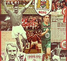 Bristol City Robins Collage by NiceGuyDesigns