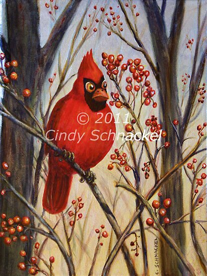 Cardinal by © Cindy Schnackel