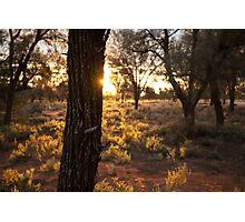 Sunset over desert landscape Photographic Print
