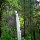 Another waterfall by Michael Jordan