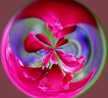 Colorful Pink Orb by Cynthia48