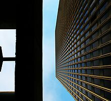 Up, San Francisco-2 by Elizabeth Bravo