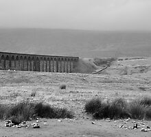Ribblehead Viaduct by Designer023