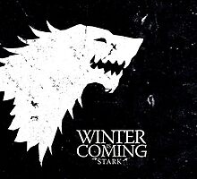 House of Stark by Amnesias