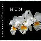 Happy Mother's Day MOM by Randy & Kay Branham