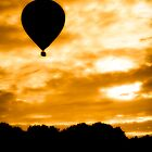 Balloon Rise by mlphoto