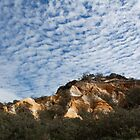 Pinnacles of Fraser Island by Linda Lees