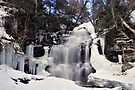 Winter Ice At Ganoga Falls by Gene Walls