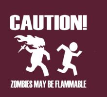 Zombies may be Flammable! by crazyvicsta