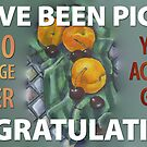 You're Accepted Group: Top 10 Banner by Shani Sohn