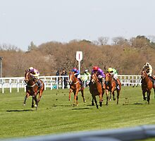 Horses Racing at Ascot  by Keith Larby