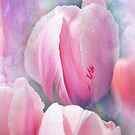 Pastels of Spring by John Rivera