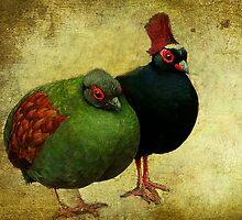 Odd Couple by EvaMarIza