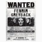 Fenrir Greyback wanted poster, Harry Potter T-shirt  by TomsScreen