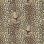 Leopards by Lisann