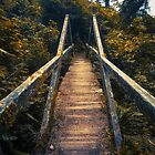 Lonely Forest Bridge by Zero Dean