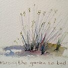 Putting the garden to bed by Vandy Massey