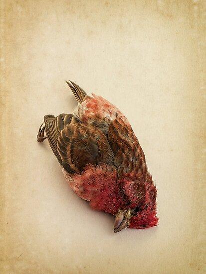 Death by Edward Fielding