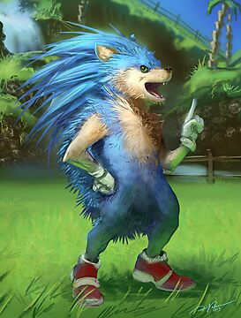 Sonic the Realhog by RJ Palmer