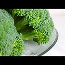 Brassica Oleracea - Broccoli by © Sophie Smith