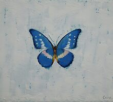 Butterfly by Michael Creese