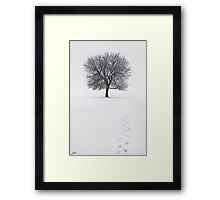 Solitude Footprints Framed Print
