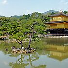 Golden Pavilion by DarthIndy