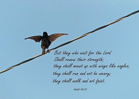 Isaiah 40:31 Greeting Card by Susan S. Kline
