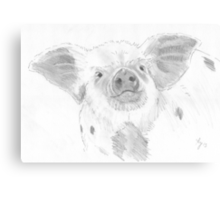 Piglet Drawing Canvas Print